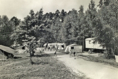Waldbad 13